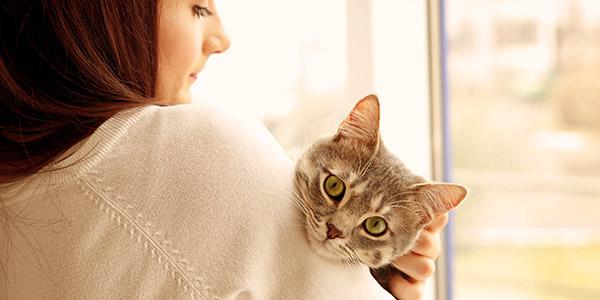 kat en baasje